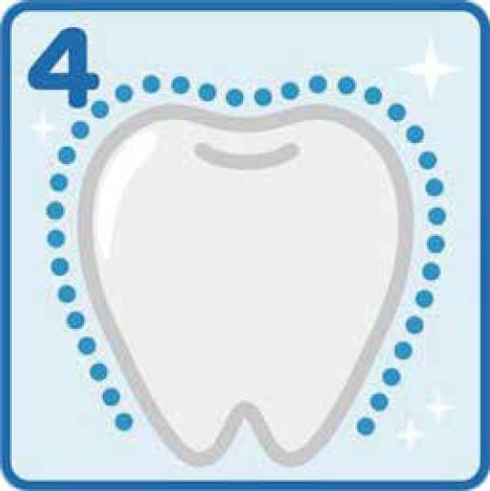 定期的なホワイトニングで表面がツルツルな本来の白い歯を維持できます。